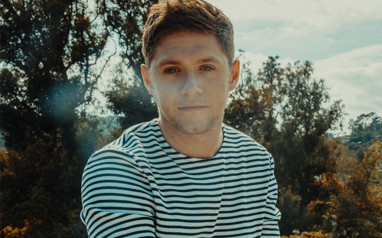 Niall Horan: When Time Comes For One Direction Reunion, 'We're Back Again'